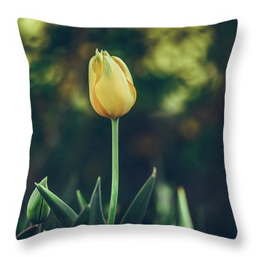 Throw Pillow featuring the photograph Silence Is Golden by Dheeraj Mutha