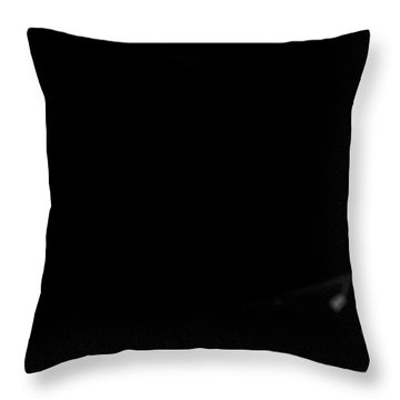 Throw Pillow featuring the photograph Silent Night by Alex Lapidus