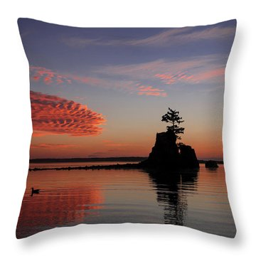 Throw Pillow featuring the photograph Siletz Bay Sunset With Gull by Mary Jo Allen