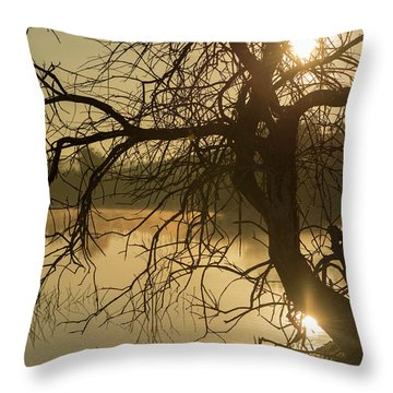 Silhouette Of A Tree By The River At Sunrise Throw Pillow