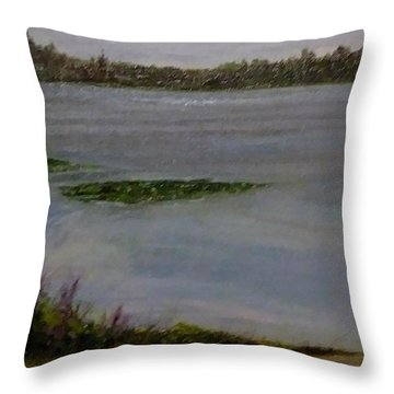 Silver Lake During The Wildfires Throw Pillow