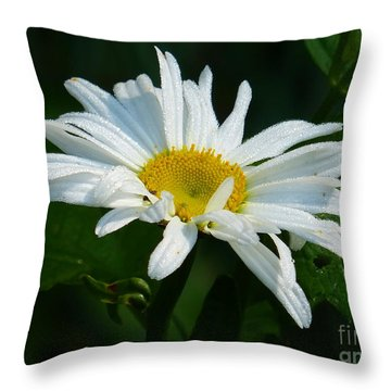 Throw Pillow featuring the photograph Simple Perfection by Rosanne Licciardi