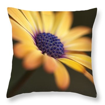Simply Beautiful In Yellow To Orange  Throw Pillow