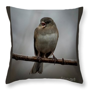 Singing Junco 1 Throw Pillow