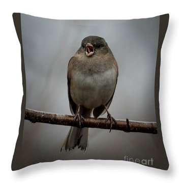Singing Junco 2 Throw Pillow
