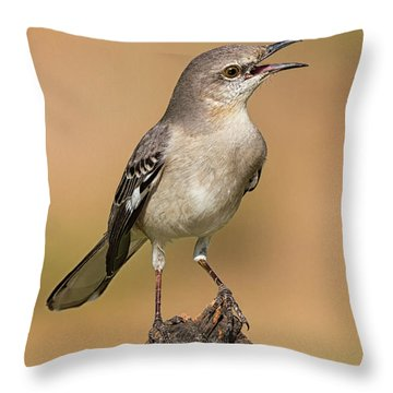 Singing Mockingbird Throw Pillow