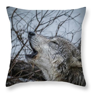 Singing The Song Of My People Throw Pillow