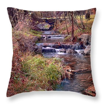 Sinoquippie Run Throw Pillow