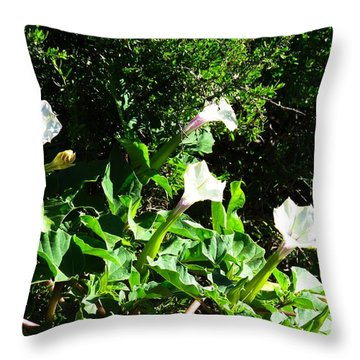 Sisters In The Sun Throw Pillow