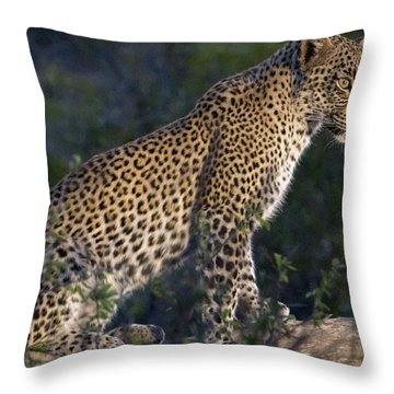 Sitting Leopard Throw Pillow