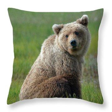 Sitting Peacefully Throw Pillow