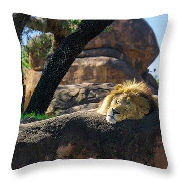 Sleepy Lion Throw Pillow