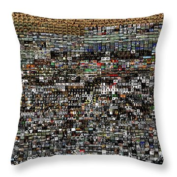 Slice Of Lanscape Throw Pillow