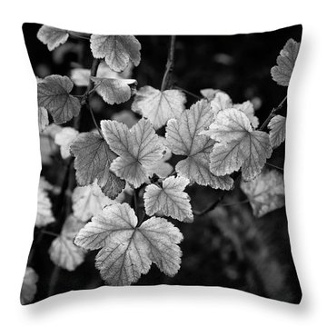 Slipping Into Fall Throw Pillow