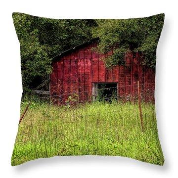 Small Barn 3 Throw Pillow