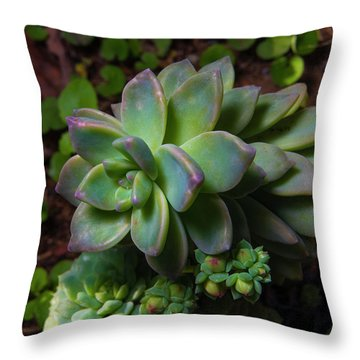 Small Succulents Throw Pillow