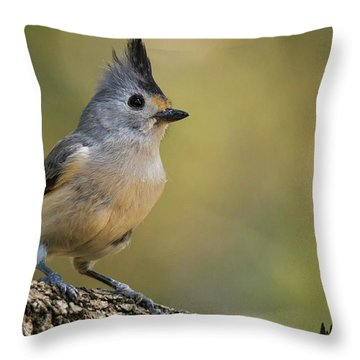 Small Titmouse Throw Pillow