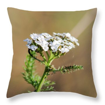 Throw Pillow featuring the photograph Small White Flowers by Scott Lyons