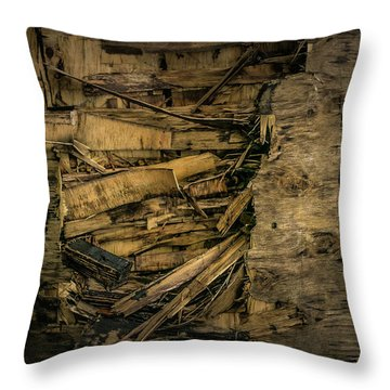 Smashed Wooden Wall Throw Pillow