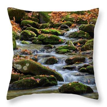 Smokey Mountain Cascades Throw Pillow
