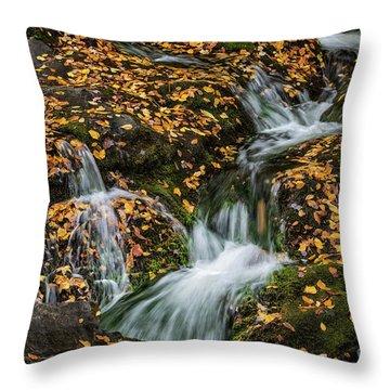 Smokey Mountain Falls Throw Pillow