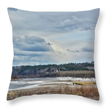 Smooth Landing  Throw Pillow
