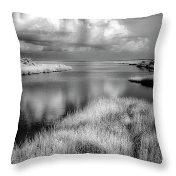 Smooth Waters Bw Throw Pillow