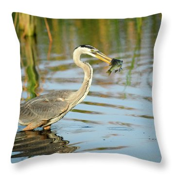 Snack Time For Blue Heron Throw Pillow