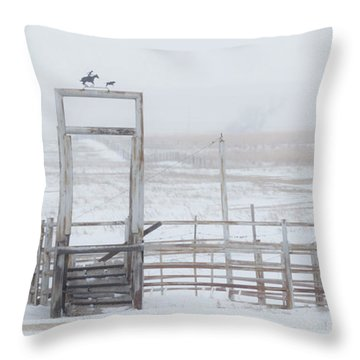 Throw Pillow featuring the photograph Snow And Corral 01 by Rob Graham