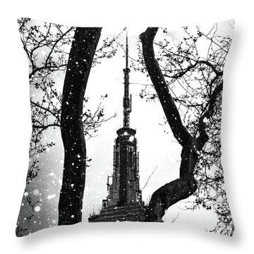 Snow Collection Set 07 Throw Pillow