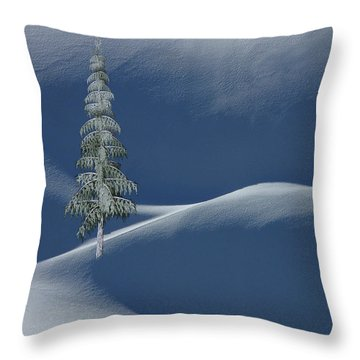 Snow Covered Tree And Mountains Color Throw Pillow