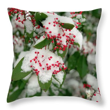 Snow Covered Winter Berries Throw Pillow