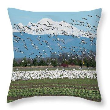Snow Geese Wildlife Mt Baker Landscape Nature Throw Pillow