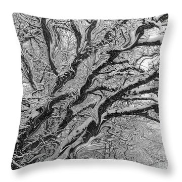 Snow Melt Throw Pillow