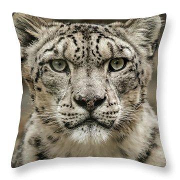 Snowleopardfacial Throw Pillow