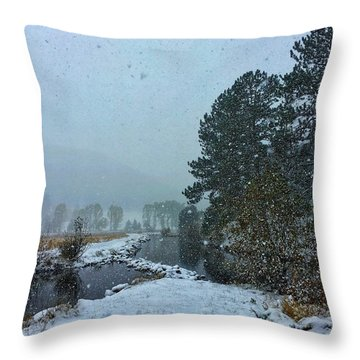 Throw Pillow featuring the photograph Snowstorm At The Lake by Dan Miller