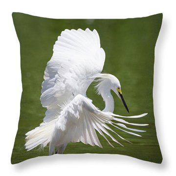 Snowy Dance Throw Pillow