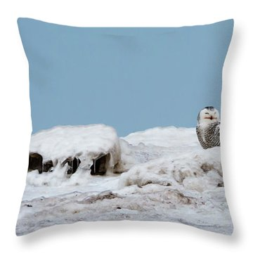 Snowy Day Throw Pillow