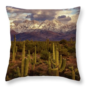 Throw Pillow featuring the photograph Snowy Dreams by Rick Furmanek