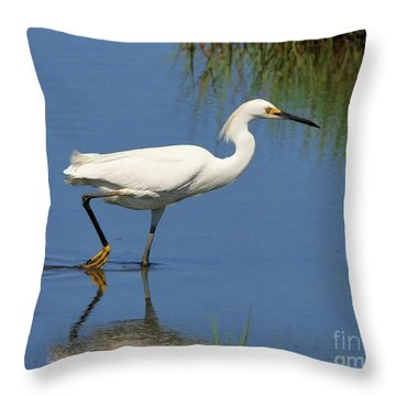 Throw Pillow featuring the photograph Snowy Egret by Debbie Stahre