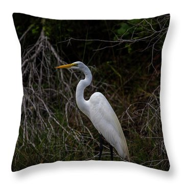 Great Egret On A Hot Summer Day Throw Pillow