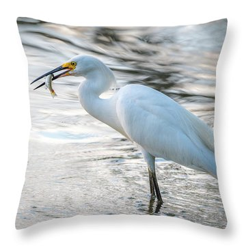 Snowy Egret With Dinner Throw Pillow