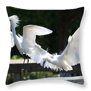 Snowy Egrets Drama Throw Pillow