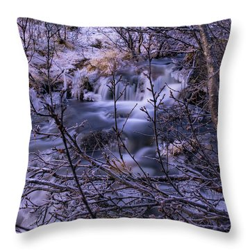 Snowy Forest With Long Exposure Throw Pillow