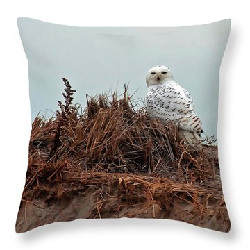 Snowy Owl In The Dunes Throw Pillow