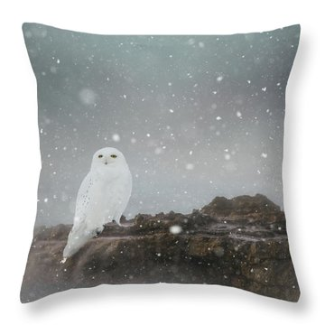 Snowy Owl On A Ledge Throw Pillow