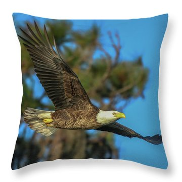 Throw Pillow featuring the photograph Soaring Eagle by Tom Claud