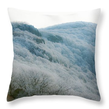 Soft Hoarfrost Throw Pillow