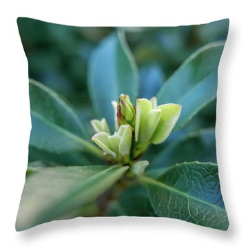 Softly Blooming Throw Pillow