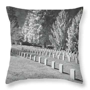 Somber Scene Throw Pillow